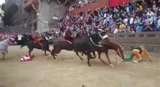 Palio di Siena, cavallo cade e muore