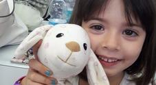 Sofia morta di malaria in ospedale: assolta l'infermiera della Pediatria