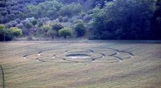 Forme grandi decine di metri E' ritornata la stagione dei cerchi di grano