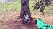 Con la moto contro un albero: muore a 19 anni