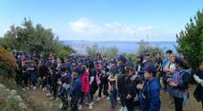 Gli alunni di Anacapri a scuola di paesaggio con gli olivicoltori