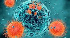 Tumori, la Cina sviluppa nuova immunoterapia: «Così le cellule malate vengono uccise»