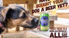 Arriva la birra per cani: li aiuta a digerire grazie alla curcuma