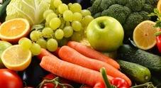 Fertilità maschile, mangiare 300 grammi di frutta e verdura migliora vitalità spermatozoi