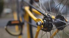 Scatta l'asta delle biciclette senza un padrone: ritrovate negli anni, nessuno le ha reclamate (Foto di Free-Photos da Pixabay)