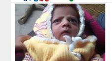 Neonato ucciso da scimmia: «Strappato dalle braccia della mamma che lo allattava»