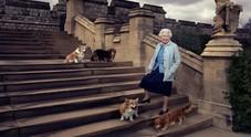 La regina Elisabetta in lutto: morto Whisper, il suo ultimo corgi (Annie Leibovitz / PA Wire)