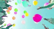 «Vietare i palloncini alle feste per salvare gli uccellini»