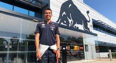 Red Bull, o la va o la spacca: promuove Albon. Gasly retrocesso in Toro Rosso