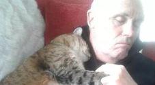 Si addormenta sul divano dopo l'operazione: al suo risveglio trova un nuovo amico