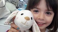 Sofia Zago morta a 4 anni