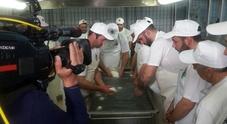 Mozzarella di bufala campana, parte il nuovo anno di studi della Scuola di formazione