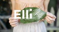 Volkswagen Group lancia Elli (Electric Life), nuovo brand per offerta energia e ricarica veicoli