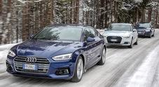 Audi, l'anima eco sul palcoscenico dell'Alta Badia. A fianco di Care's con i modelli e-Tron e g-Tron