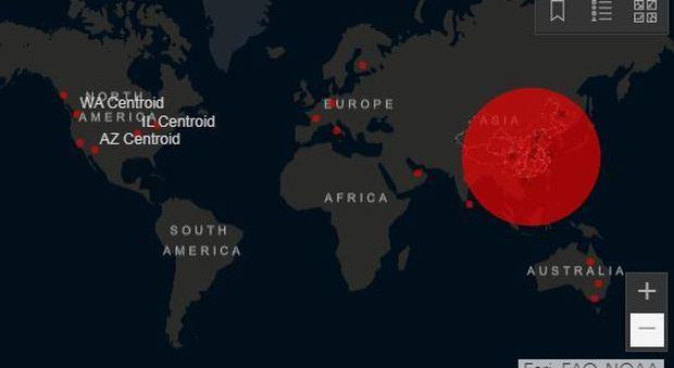 Coronavirus, la mappa dei casi nel mondo: ecco la distribuzione geografica