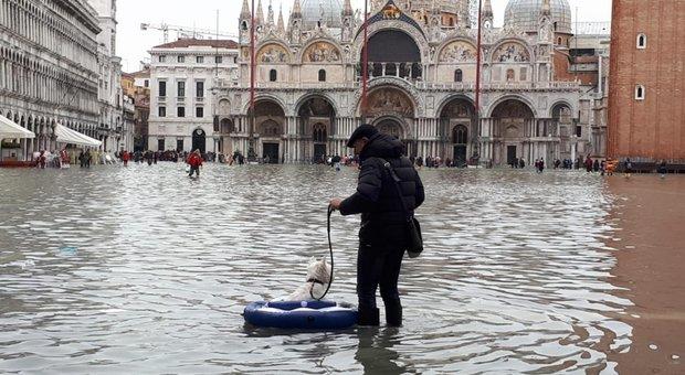 Venezia, acqua alta causata dal mix di scirocco e marea