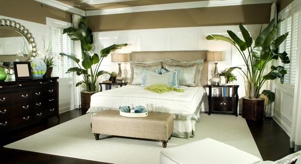 Piante in camera da letto? Si può: ecco quali scegliere
