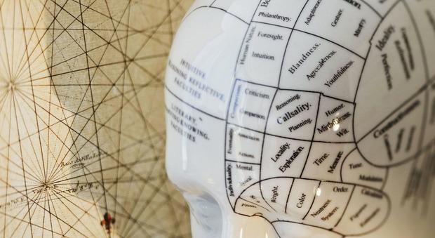 Allo studio 50 farmaci anti-Alzheimer: al via test su pazienti italiani