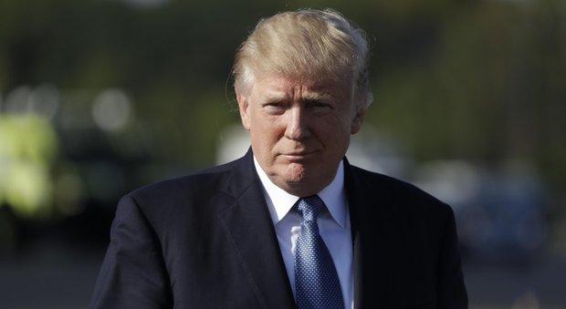 Donald Trump (Ansa)