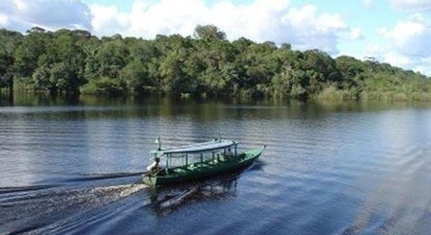 Il richiamo della foresta: bellezze incontaminate sul Rio delle Amazzoni