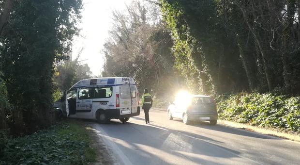 Sant'Elpidio a Mare, sbanda e si schianta contro un albero con il furgone del Comune: un uomo all'ospedale