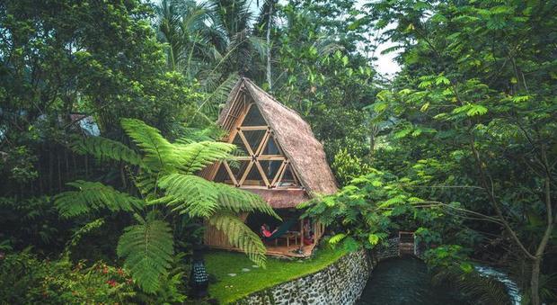 immagine Vacanza da sogno nella casa-capanna di bambù nella giungla di Bali