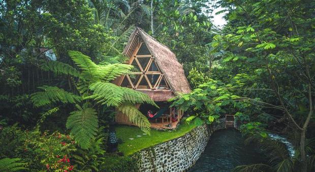 immagine Vacanza da sogno. Una casa-capanna di bambù nella giungla di Bali
