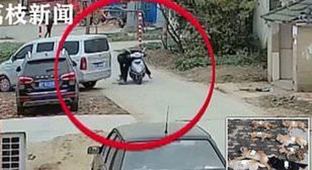 Ristoratore cinese uccide otto cani in due ore per preparare hot-dog