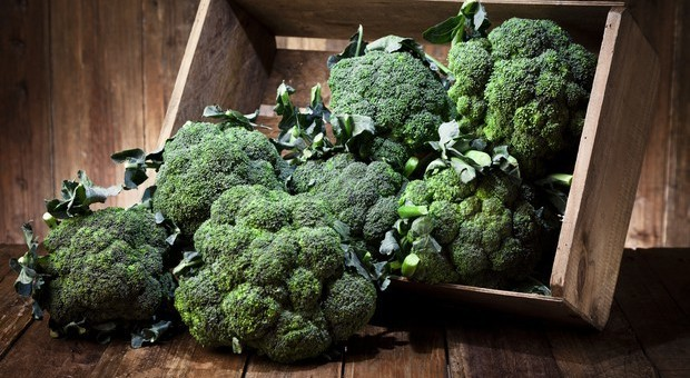 Arriva il caffè a base di broccoli: vitamine in tazza. In Australia si serve nei bar