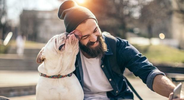 Nella barba degli uomini più germi che nel pelo dei cani
