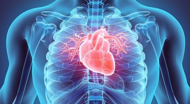 L'infarto è scritto nel sangue: trovato il marcatore che svela le persone a rischio