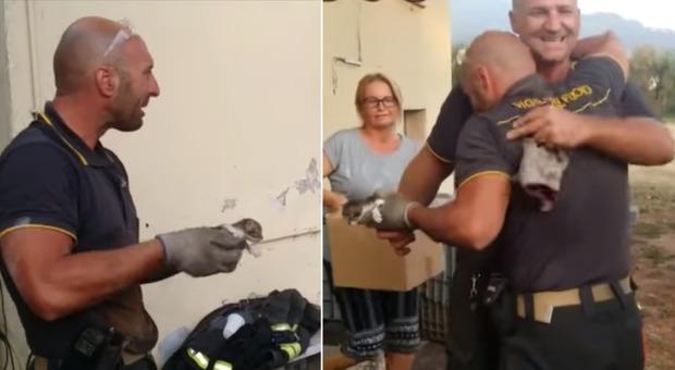 Il vigile del fuoco salva il gattino intrappolato e si commuove: «Mi venisse un colpo...»