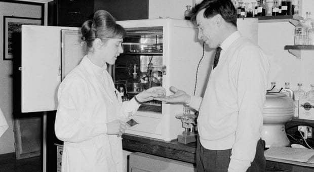 Jean Purdy, l'embriologa infermiera, che contribuì alle ricerche sulla fecondazioni in vitro