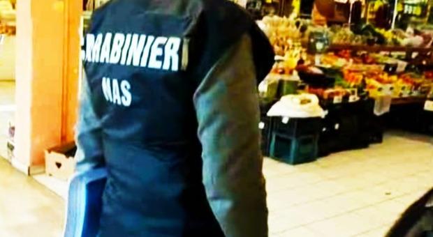Un controllo del Nas di Pescara nel settore alimentare Tonno ricongelato, multa e sequestro del Nas per un sushi bar a Pescara