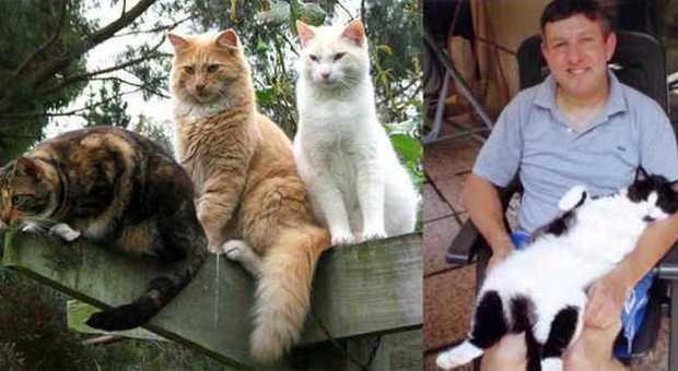 Gianni Sperandio mostra l'ultimo dei suoi gatti spariti