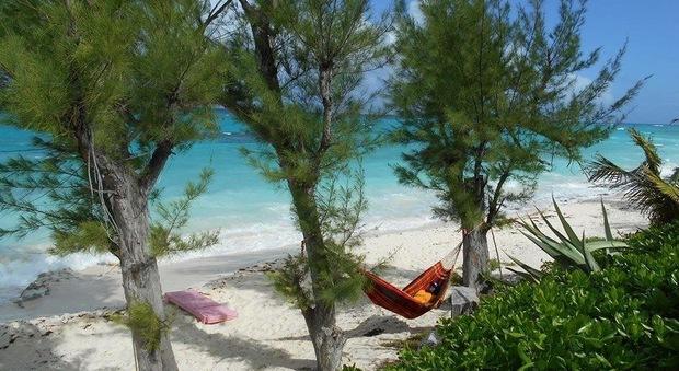 Nel resort oversize alle Bahamas anche le amache sono rinforzate Photo The Resort