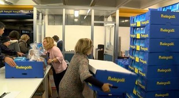 Melegatti è pronto con le colombe pasquali, nei supermercati e con la vendita online (Ansa)