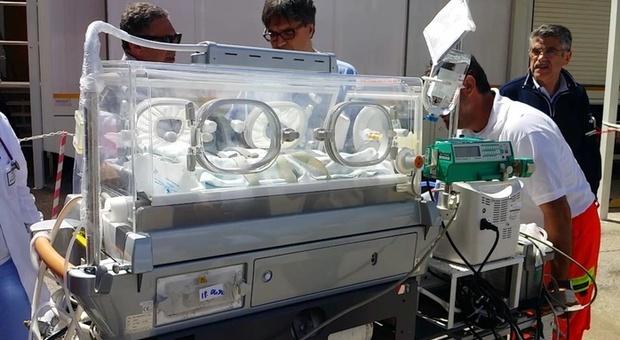 Meningite, menigococco B per neonato al Gaslini: è stabile