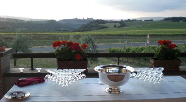 Domenica in gita tra le vigne da Orvieto a Bagnoregio