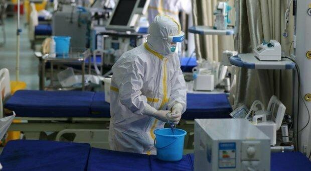 Influenza suina, registrato un primo caso negli Usa: è il primo del 2021