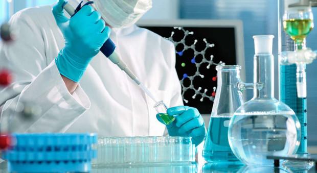 """Cancro, scoperto l'interruttore che """"spegne"""" le cellule killer dei tumori"""