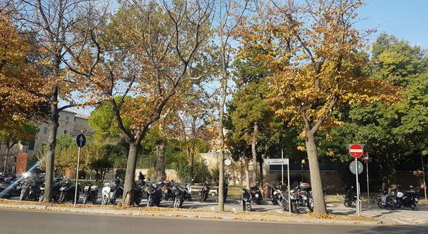Pesaro, ragazzino rapinato in centro: caccia alla baby gang nelle immagini di videosorveglianza