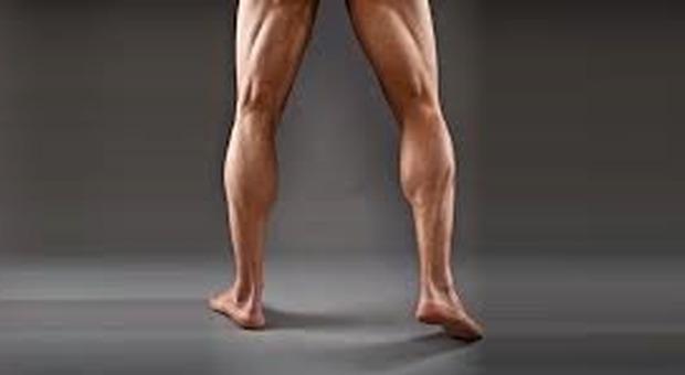 Sesso, le gambe lunghe e ben proporzionate degli uomini seducono le donne