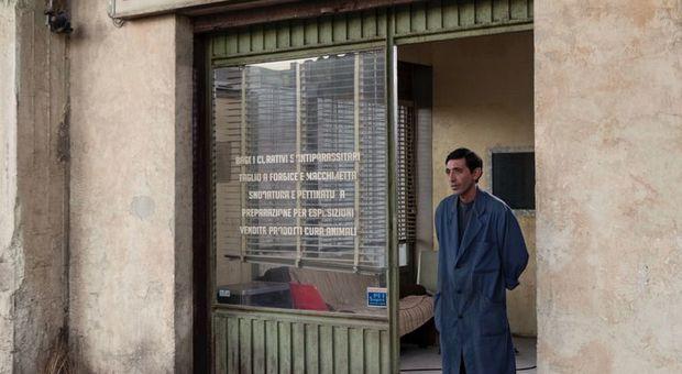 Marcello Fonte nel film