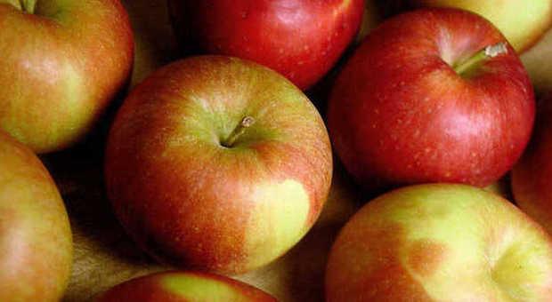 """Sesso, una mela al giorno come """"viagra rosa"""" stimola il piacere femminile"""