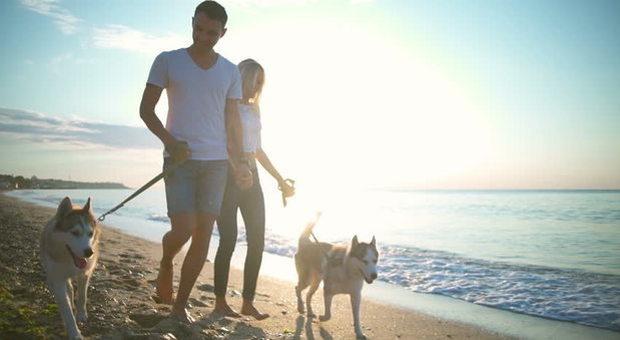 Avere un cane fa bene al cuore e allunga la vita