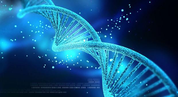 Nasce il Super Dna, aiuterà a riconoscere forme di vita aliena