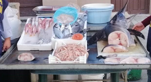 Foto di repertorio: controlli sul pesce venduto nei ristoranti
