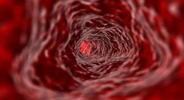 Il virus dell'epatite A
