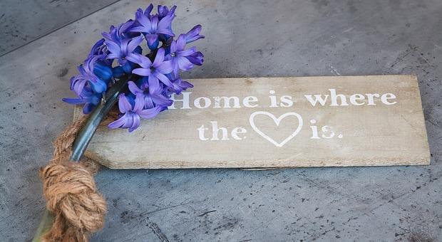 immagine Come avere una casa profumata: idee e trucchi per dire addio ai cattivi odori